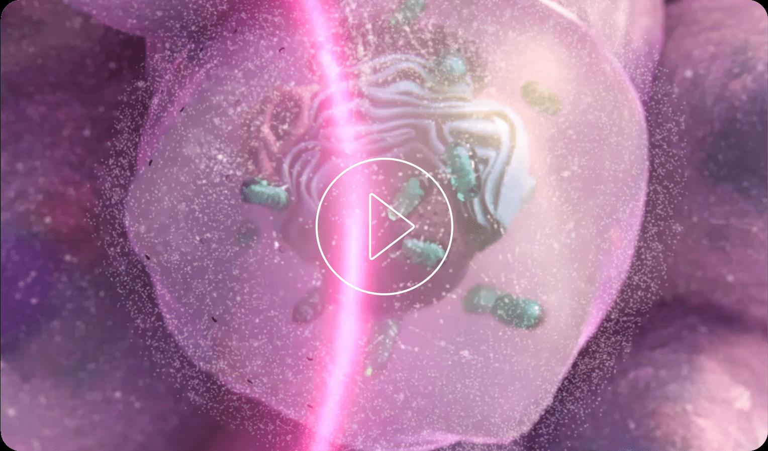 Miniatura de video MOA